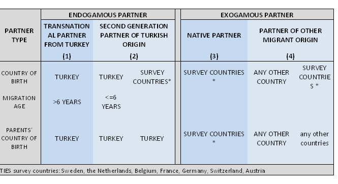 Table 1.  Definition of the four partner types.