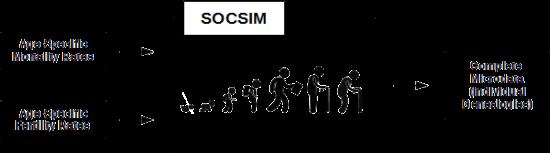 SOCSIM